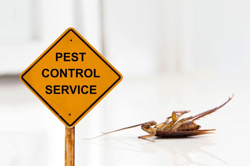 Pest control Idaho